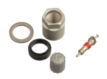 Picture of 20031 TPMS Service Pack  By SCHRADER ELECTRONICS