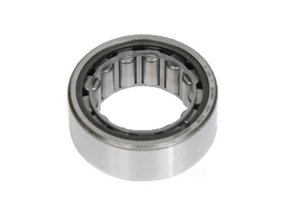 Picture of 1581TS Differential Pinion Pilot Bearing  By ACDELCO GM ORIGINAL EQUIPMENT CANADA