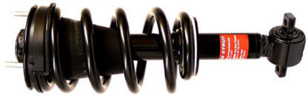 Picture for category Shocks and Struts